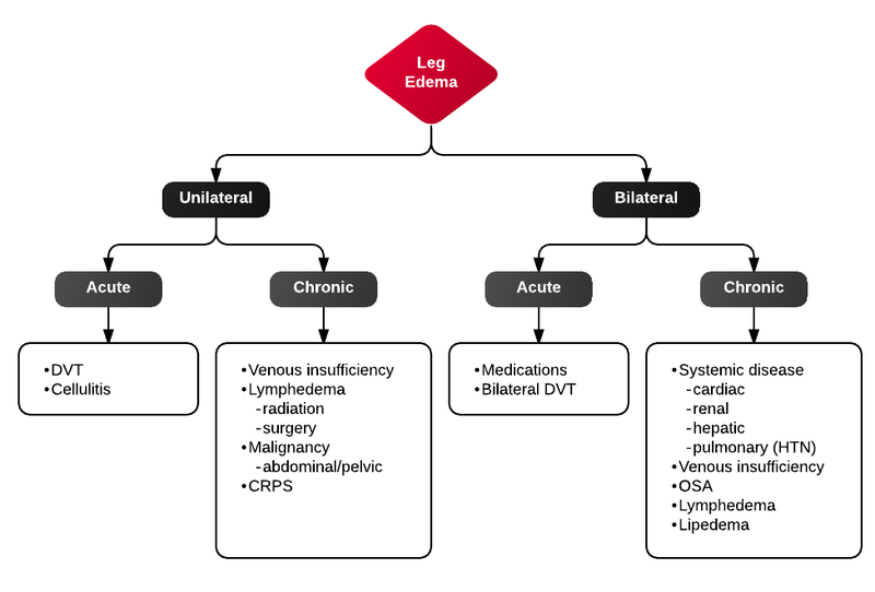 File:Differential Diagnosis of Lower Extremity Edema.png