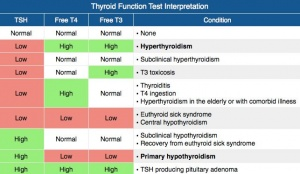 Thyroid studies.JPG